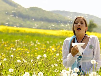 Поллиноз: сезонные и внесезонные проблемы