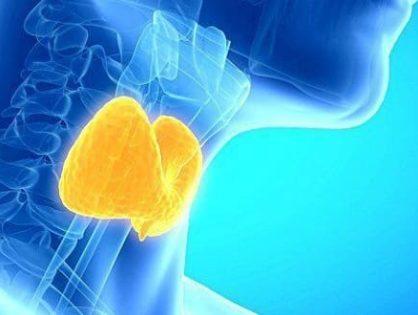 Как восстановить щитовидную железу после болезни или операции