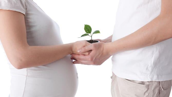 Репродуктивность