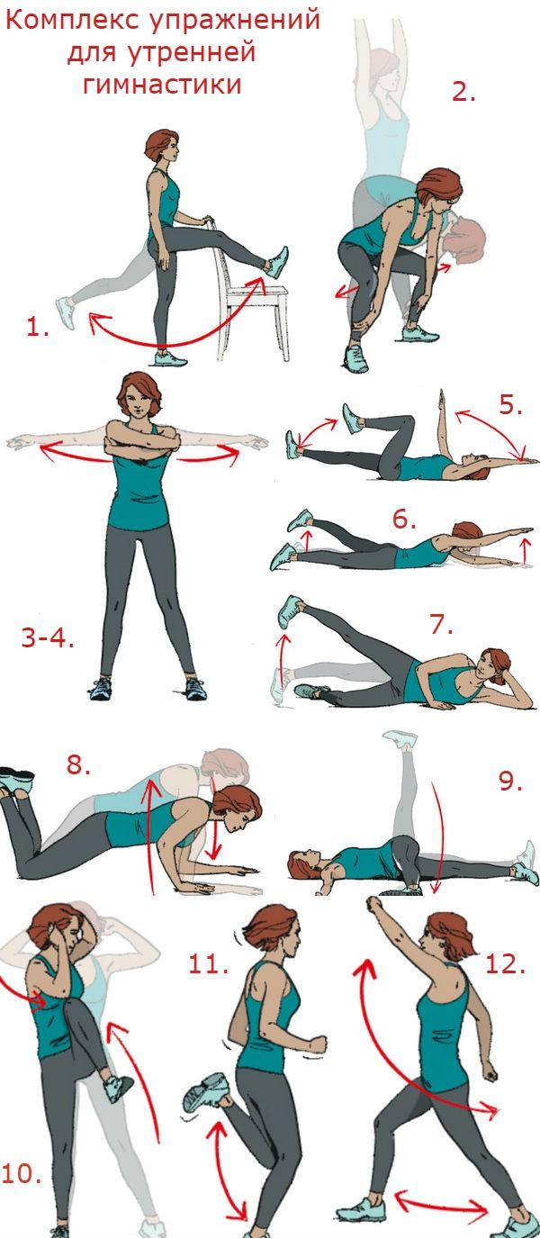 Зарядка по утрам комплекс упражнений картинками