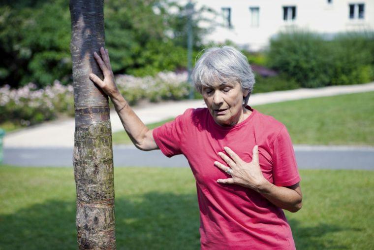 Если одышка после физических упражнений долго не проходит, значит нагрузки не под силу организму (фото: infoherbs.com.ua)