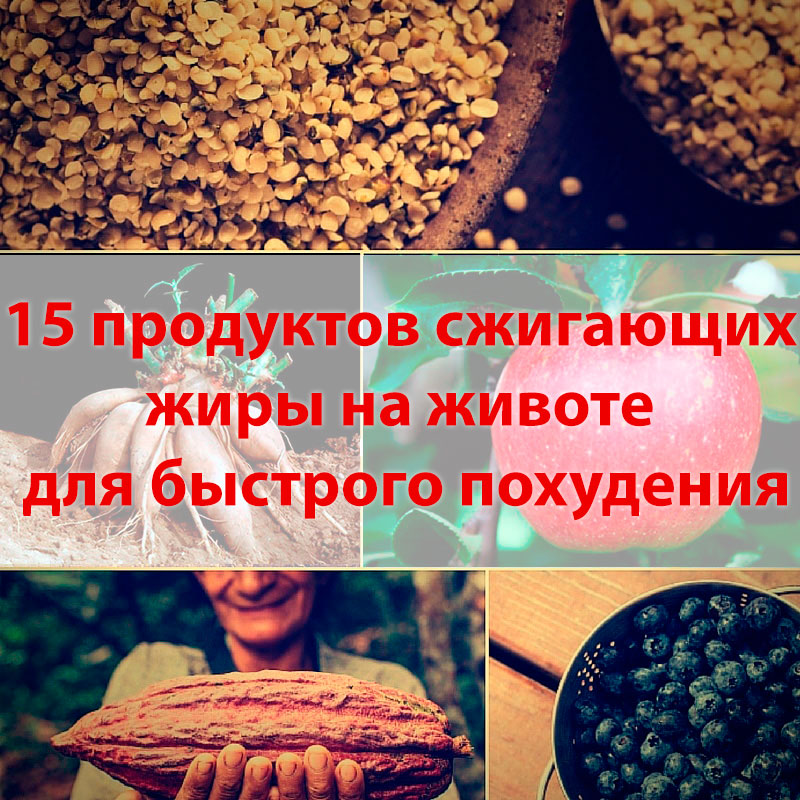 15 лучших продуктов для жиросжигания