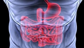Аутоиммунный гастрит: как выявлять и лечить