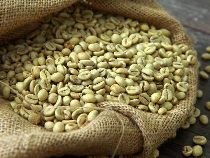 Что такое зеленый кофе? Все что вам нужно знать