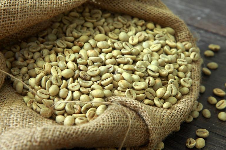 Зеленый кофе: польза и вред, для похудения