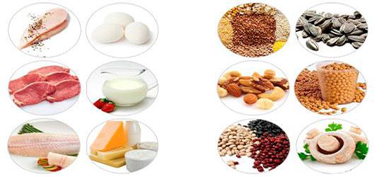produkty-dlya-belkovoy-diety