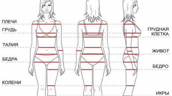 Как правильно делать замеры тела заработать моделью онлайн в опочка