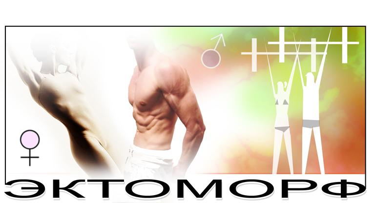 Набор мышечной массы для эктоморфа