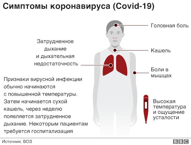 Как самоизолироваться во время коронавируса? Практическая инструкция - BBC  News Русская служба