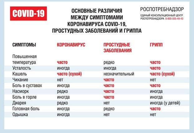 Названы основные различия коронавируса, простуды и гриппа   TLT.ru -  Новости Тольятти