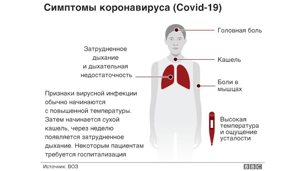Все о коронавирусе - маленькими порциями - BBC News Русская служба